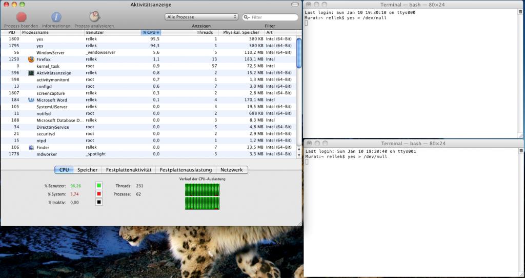 Auslastung unter OS X erzeugen, via Terminal