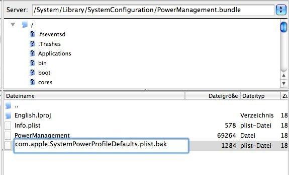 Umbenennen von com.Apple.SystemPowerProfileDefault.plist per SSH