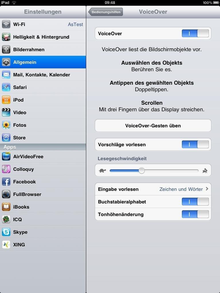 iPad-Einstellungen VoiceOver - Screenshot
