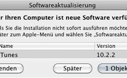 iTunes 10.2.2 veröffentlicht