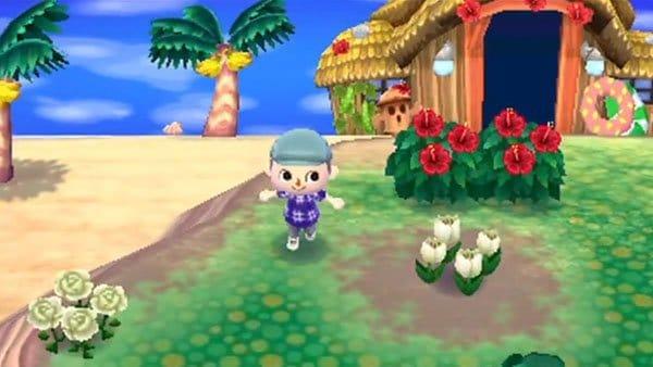 Animal Crossing New Leaf Screenshot 2