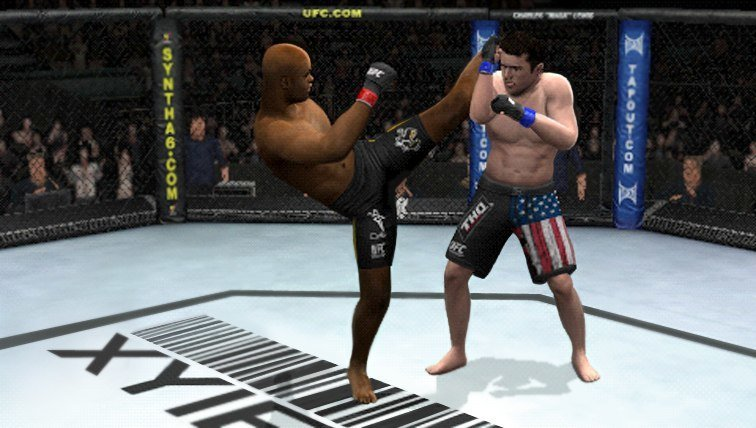 THQ verlängert Lizenzabkommen zur Ultimate Fighting Championship bis 2018