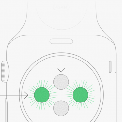 Wie funktioniert der Pulsmesser in der Apple Watch?