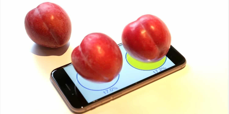 iPhone 6s - Pflaumenwaage