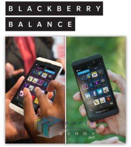 BlackBerry Z10 geleakt, Foto von Rapid Berry