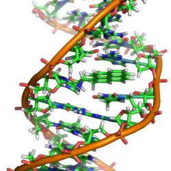 DNA als Speichermedium: Wehret den Anfängen