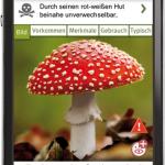 pilze-sammeln-iphone-app_2